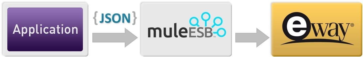 Eway Payment Portal using Mule ESB