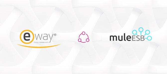 integrating eway payment portal using mule esb